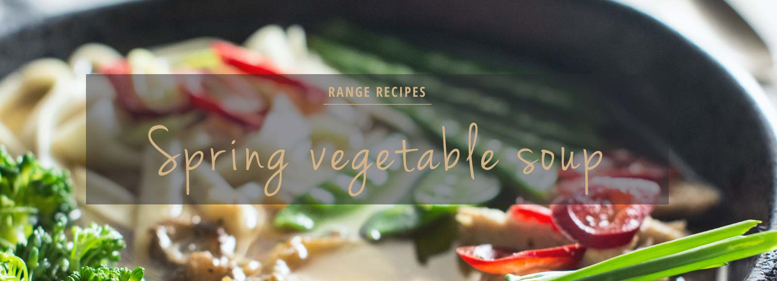 Spring vegetable soup